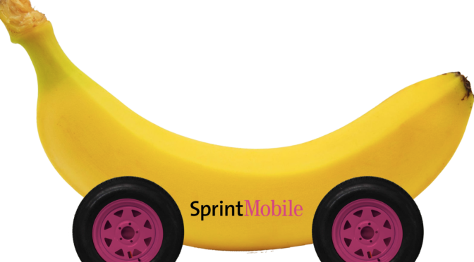 Sprint-Mobile Merger: Can You Afford It?